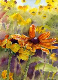 Sheryll Collins Watercolors
